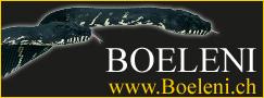 Boeleni
